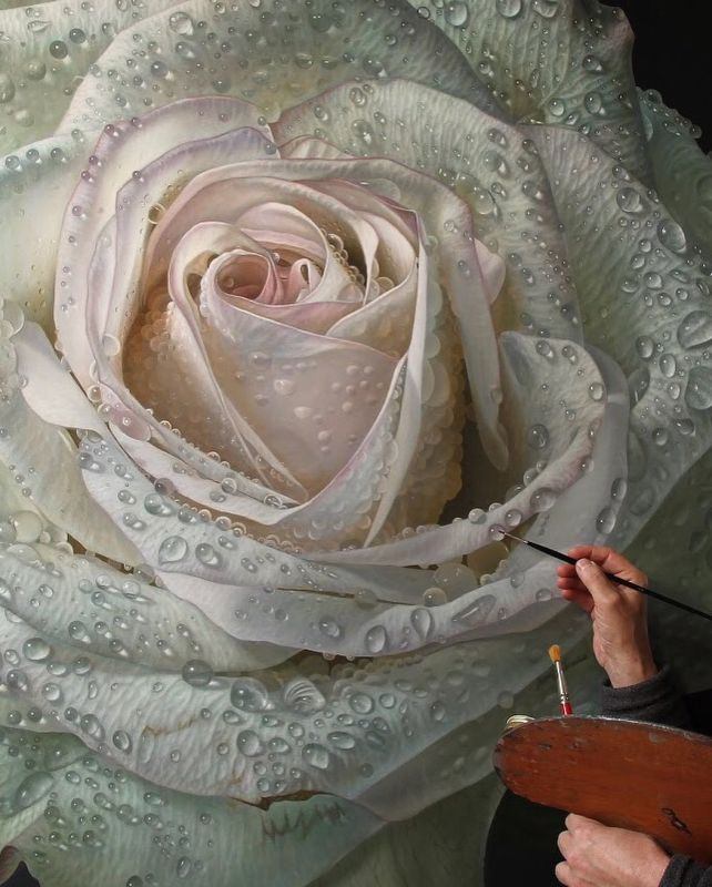 Hyper Realistic Oil Painting Rose by Gioacchino Passinni