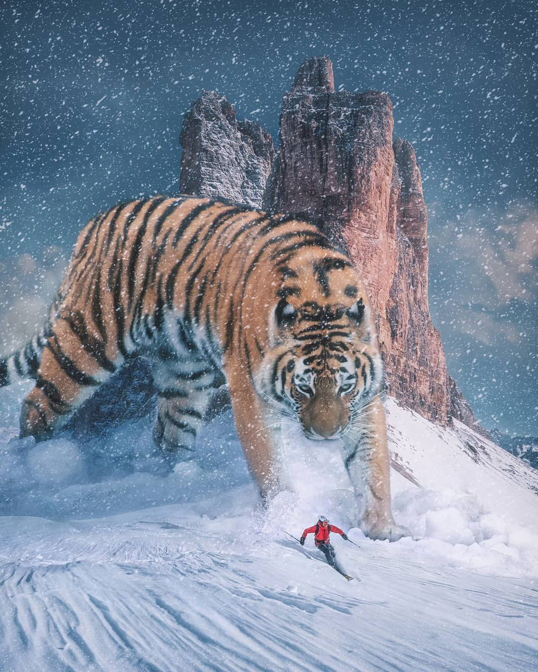 Photomanipulation Tiger by Psguy2026