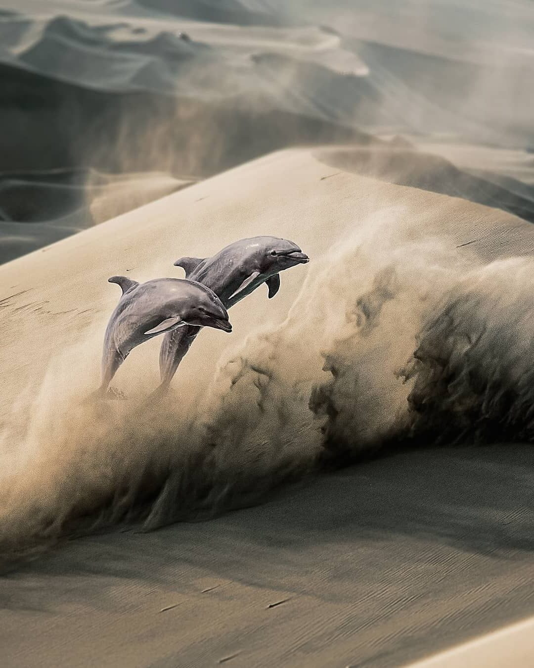 Photomanipulation Dolphin by Psguy2026