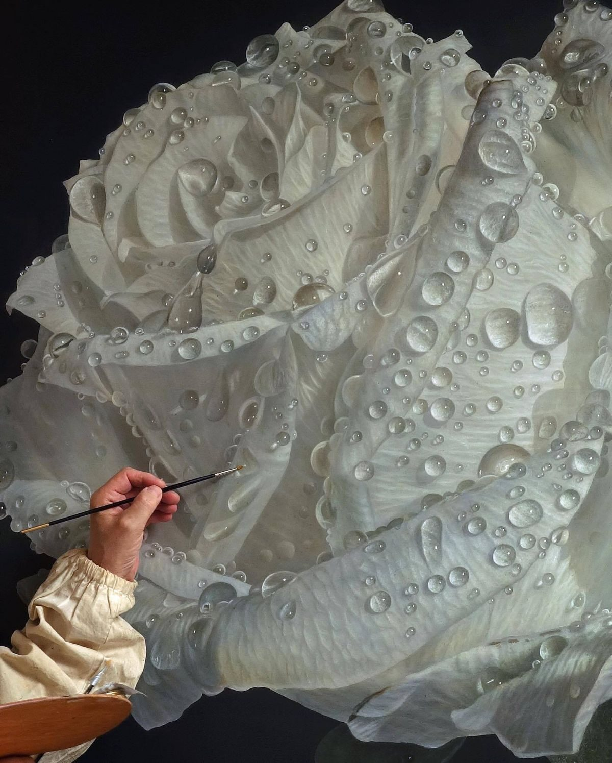 Hyper Realistic Oil Painting White Rose by Gioacchino Passini