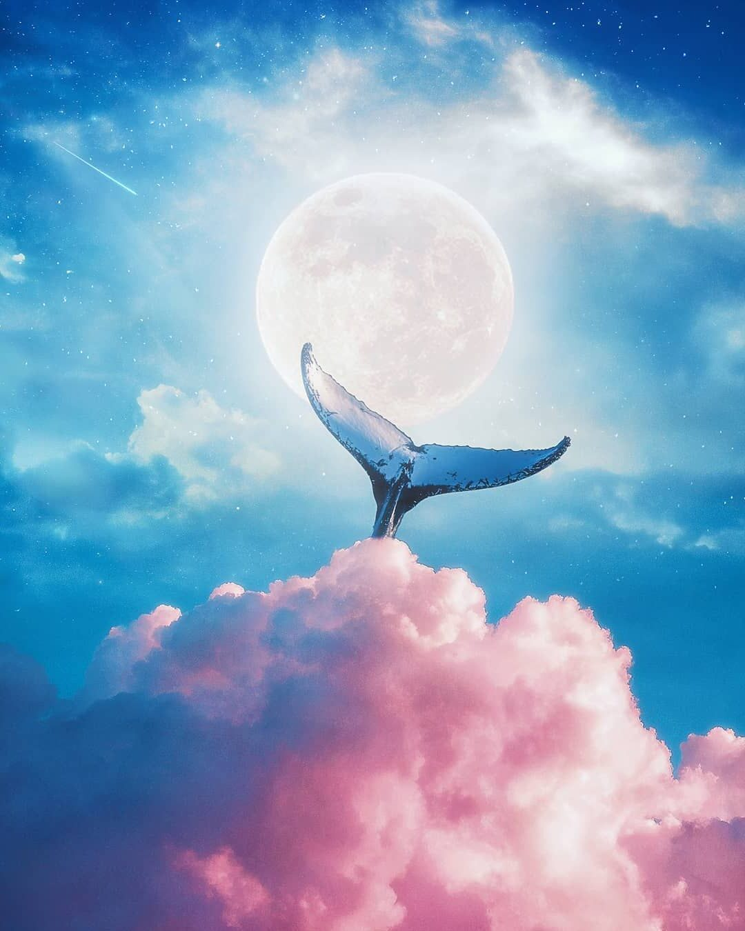 Photomanipulation Whale Tail by Psguy2026