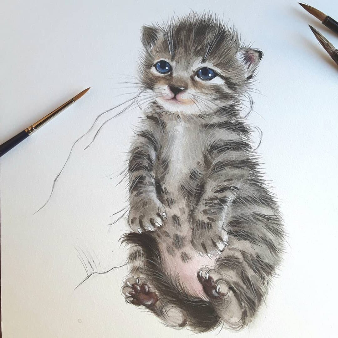 Water Color Painting Cat by Anna Llorens