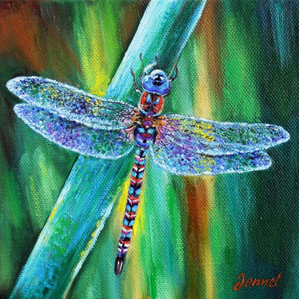 Oil Painting Dragonfly by Jennet Norman