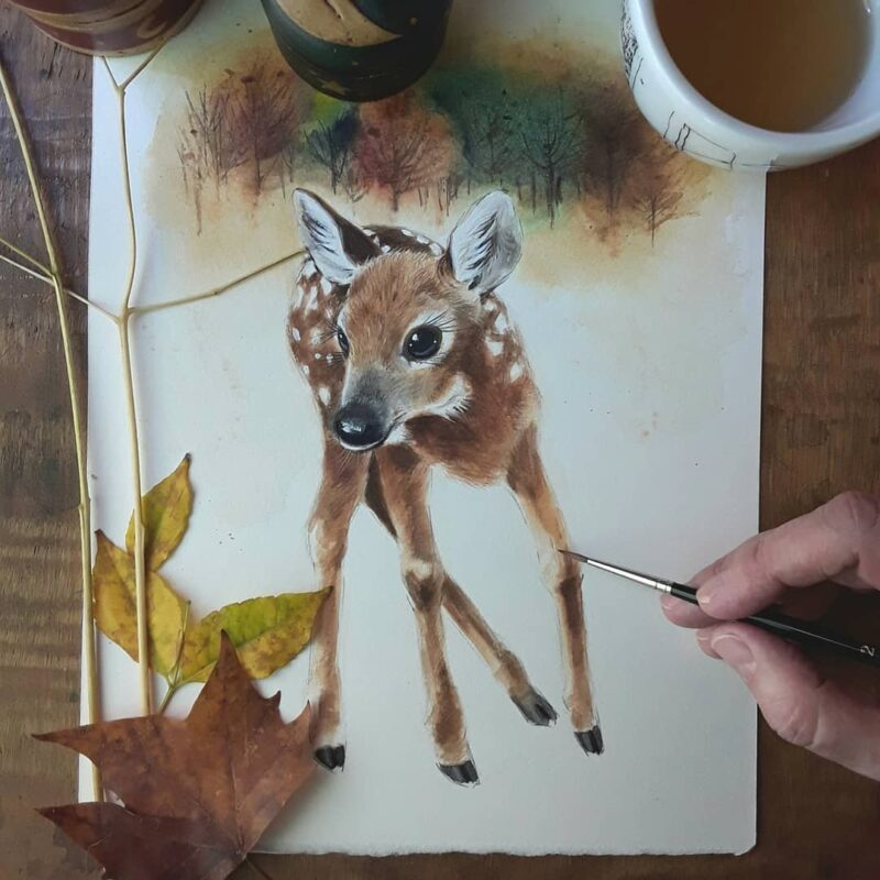 Watercolor Painting Deer by Anna Llorens