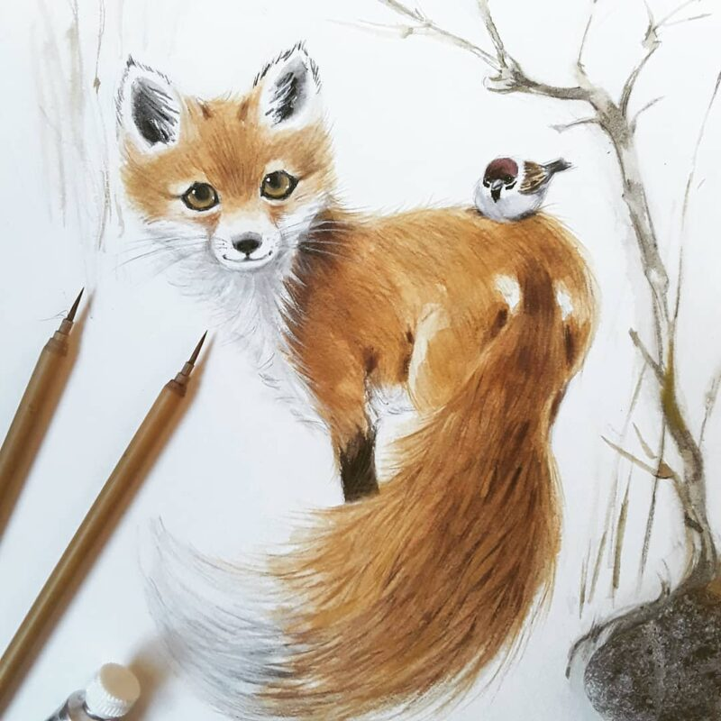 Watercolor Painting Fox by Anna Llorens