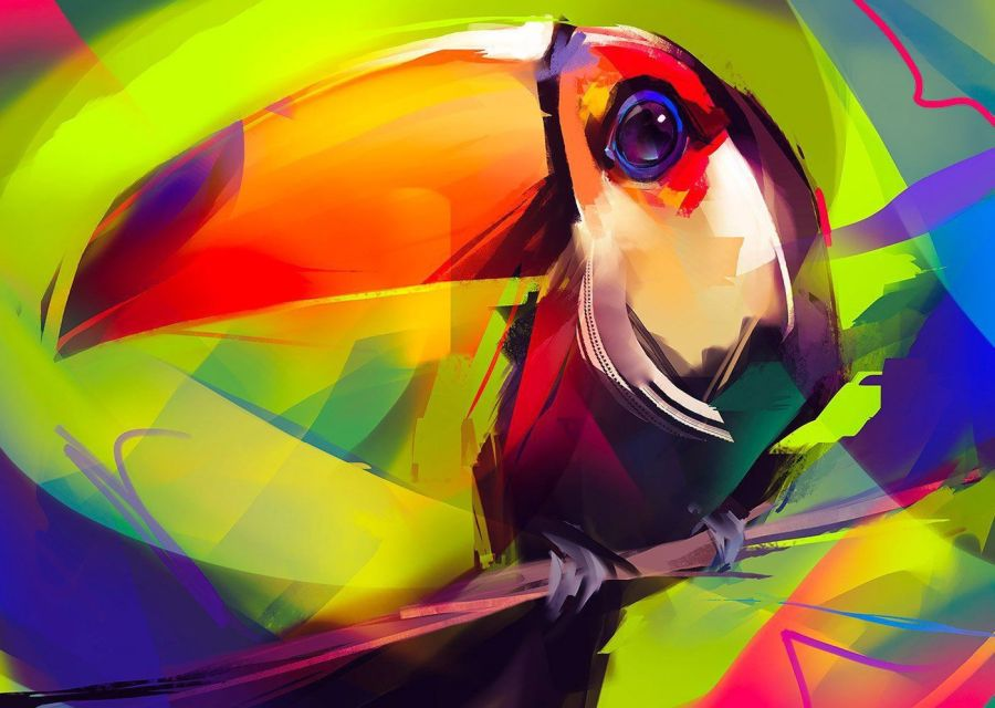 Digital Painting Toucon Bird by Guilherme Asthma